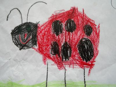ladybug-75452_1280